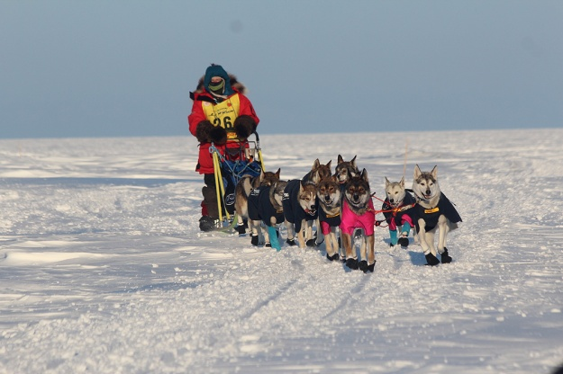Our team in the 2014 Nadezhda Hope Race, Chukotka, Russia. We finished in 2. place. Picture taken by Mille Porsild/Racing Beringia