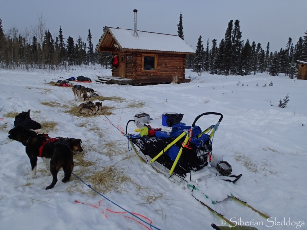Resting at Old Woman's cabin in the Kaltag portage between Kaltag and Unalakleet