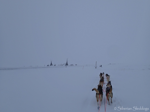 The team on the shoreline on their way to Safety and Nome