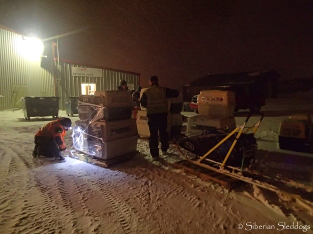 Dogs, sled and equipment are all ready to leave Nome