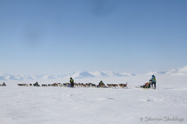Our team in the passing queue on the ice towards Provideniya