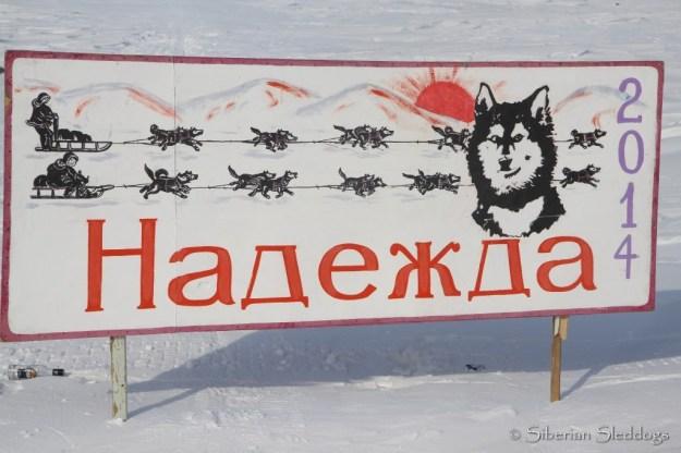 Nadezhda Hope Race banner