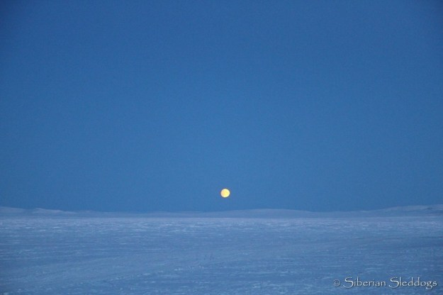 Moon rising over the Arctic