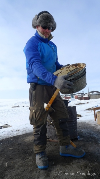 Chukchi dogs have a great appetite! We were impressed by the common size of food bowls