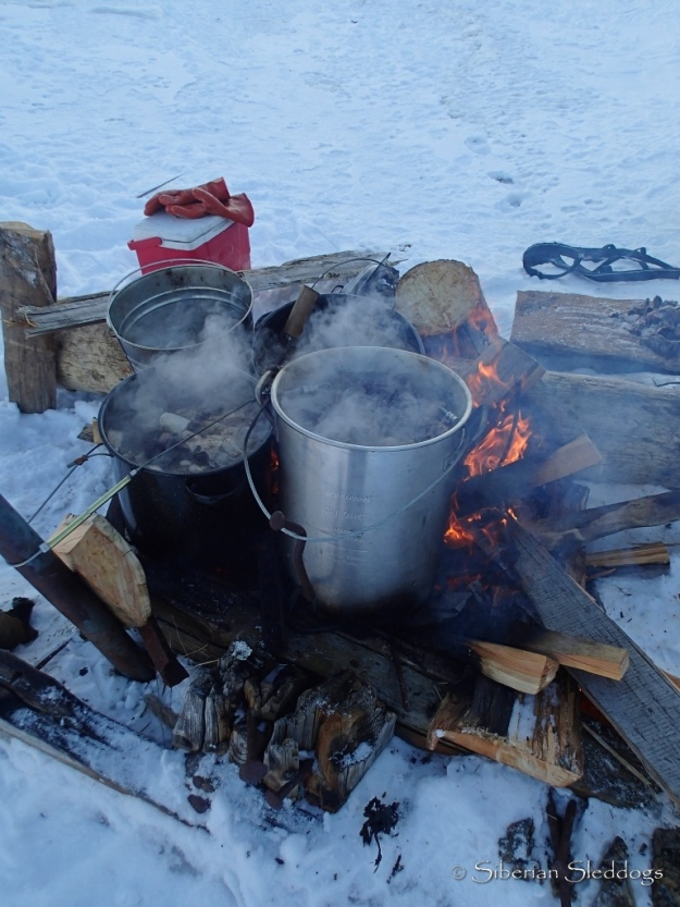 Our bonfire with pots of walrus soup cooking on the beach in Provideniya